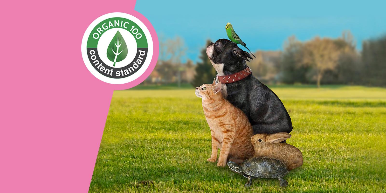 Organic-Content-Vegan Society shop abbigliamento e cosmesi