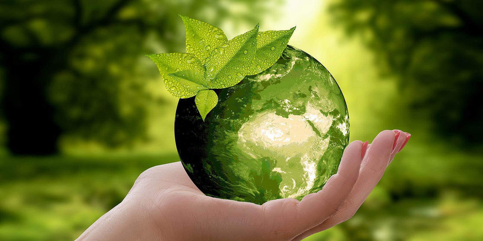 La gatta diva green ecosostenibile abbigliamento e benessere