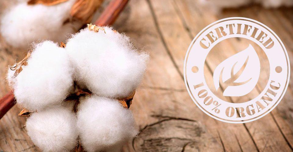 cotone organico